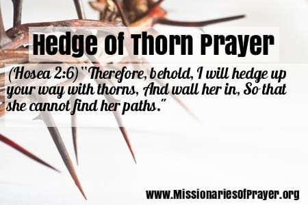hedge of thorns prayer